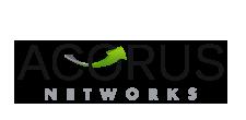 Acorus Networks