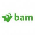 Royal BAM Group